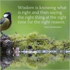 wisdom-pro31-marysoutherland
